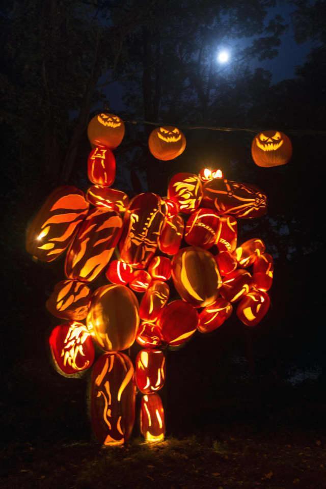 The Great Jack O'Lantern Blaze.