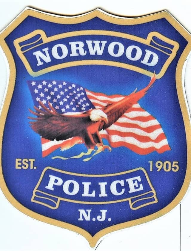 Norwood Police Chief Jeffrey Krapels asked residents and merchants to check their surveillance video, in the hopes that images of the thieves were captured.