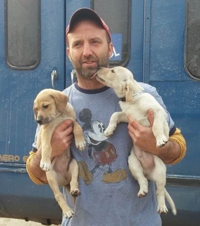 Steve Quilliam, of Fair Lawn, makes fast friends with two puppies he rescued.