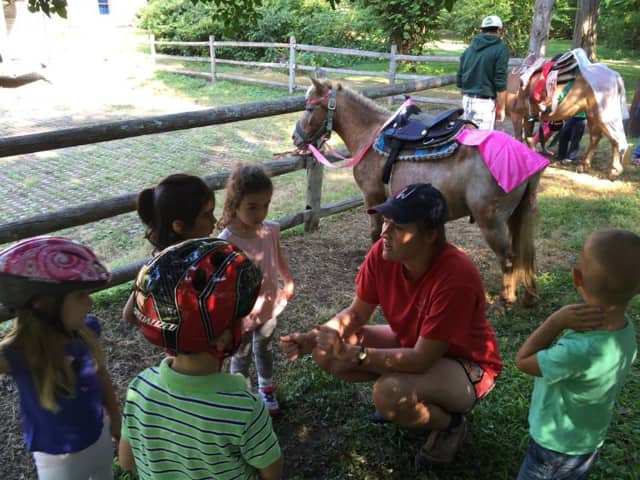 Ridgewood Parks and Recreation will host a visit from some live animals Feb. 17.