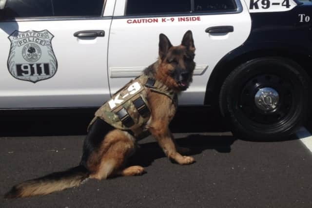 The Trap Falls Kennel Club has set up a GoFundMe page to help raise the $12,000 needed to purchase a new K-9 officer for the Stratford Police Department.