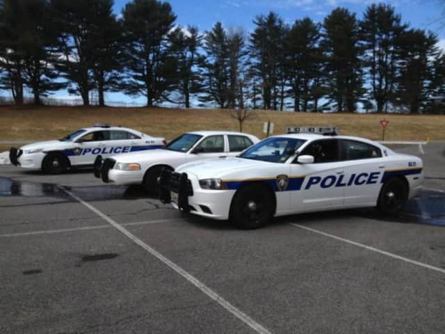 A Mohegan Lake man was issued a summons for allegedly slapping someone twice.