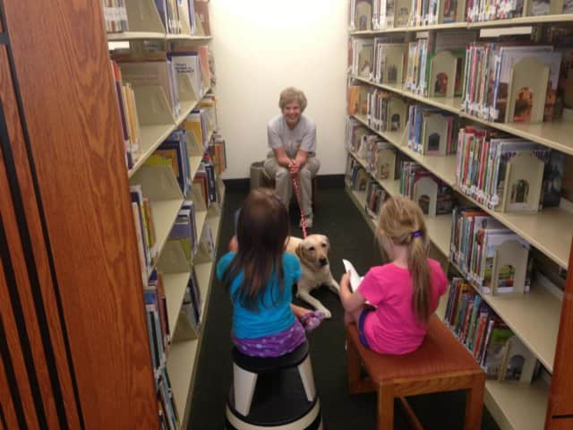 The Franklin Lakes Public Library will hold a family reading night March 9.