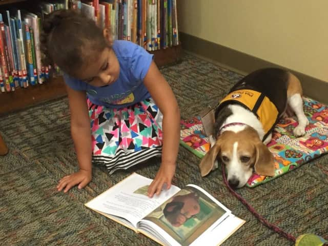 The Ramsey Public Library is giving children a chance to practice their reading skills on therapy dogs.