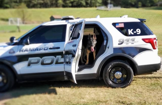 A wanted Vermont man was captured with the help of Ramapo PD K-9 Blue.