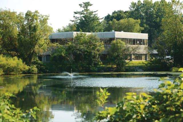 Stamford JCC