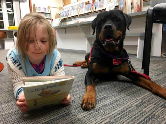 West Milford Township Library will soon complete its schedule of children's events for 2015.