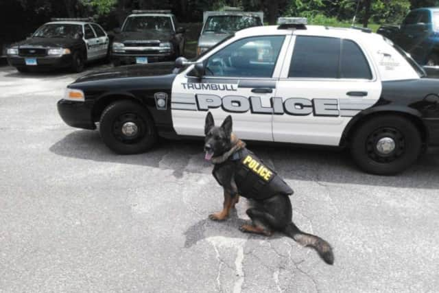 The Trumbull Police Department is currently raising funds to replace K-9 Cyrus who unexpectedly passed away.