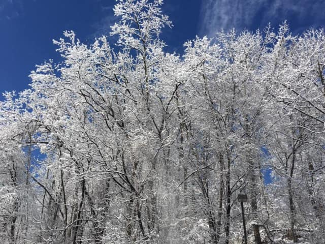 Frost is possible overnight across interior Fairfield County.