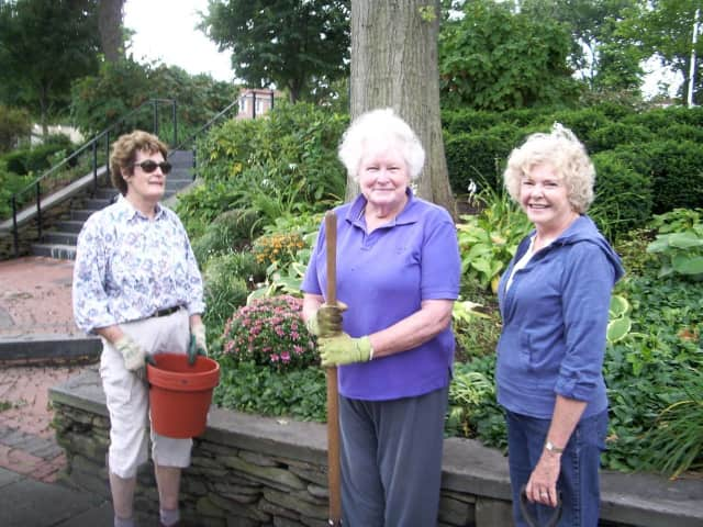 The Women Gardeners of Ridgewood Planting Chrysanthemums at Van Neste Park - Cynthia Halaby, Toni Cohen, Judith Field