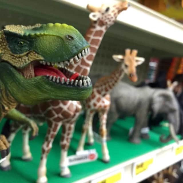 The dinosaur's in Ward's will have a map of the October yard sale.