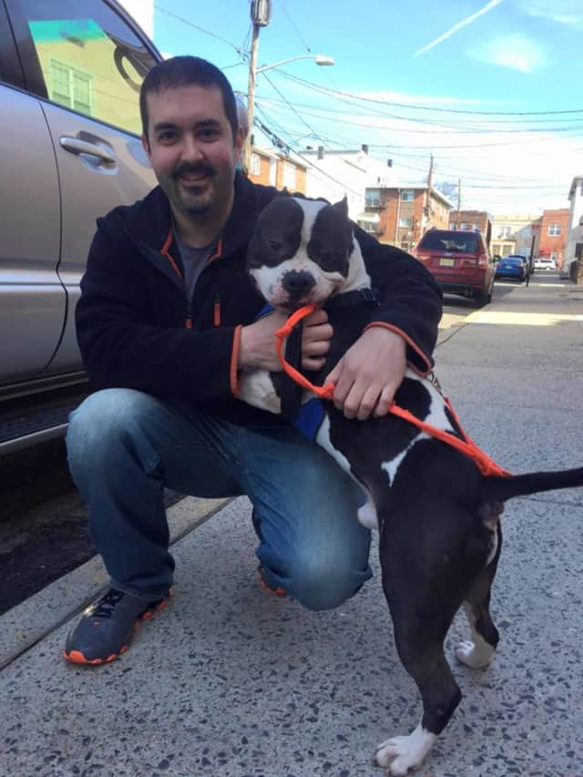 Bergen County Protect & Rescue Foundation is having a pet adoption event at Acme in Edgewater.