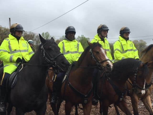 31 horses were involved in a Rockland County Sheriff's training program that held its graduation ceremony Friday, May 6.