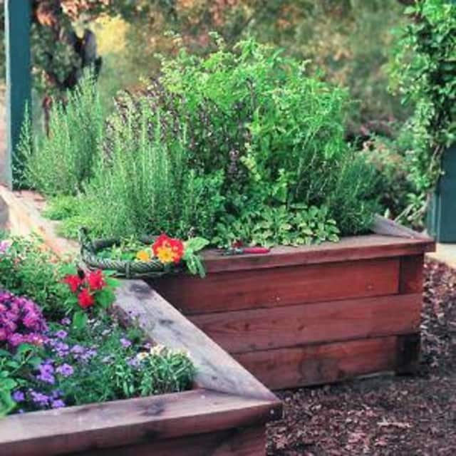 The Beekman Library will be hosting a raised-bed planting event on June 21.
