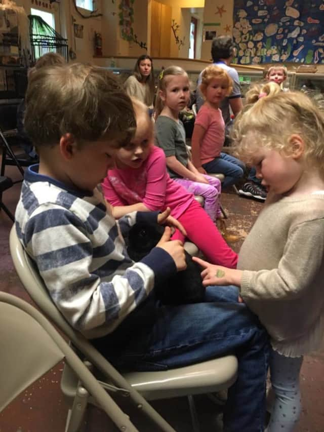 Pre-schoolers to kindergarten children take hikes, meet animals and do arts and crafts during the annual June Bugz program at the Weinburg Nature Center.