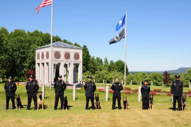 Seven new canine teams recently graduated from the Connecticut State Police Training Unit.