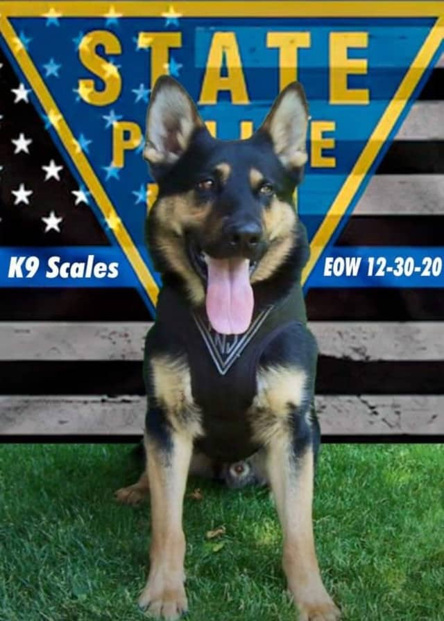 State Police are mourning the death of Scales, a K-9 officer known for his incredible ability to sniff out explosives in countless deployments across the state.