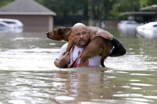 A rescuer carries a dog through floods in Louisiana.