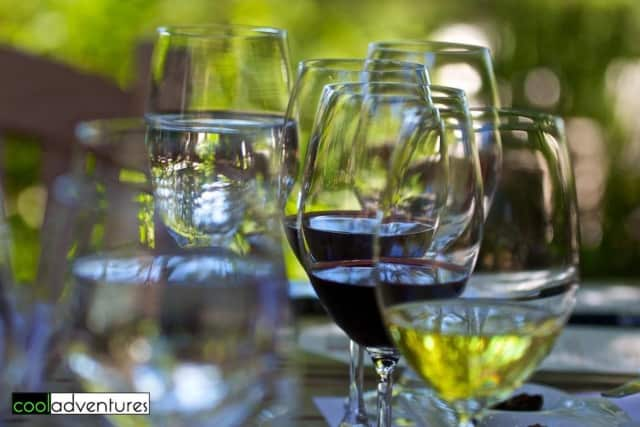 The experts at Wineology uncork the best wines to bring to important occasions.