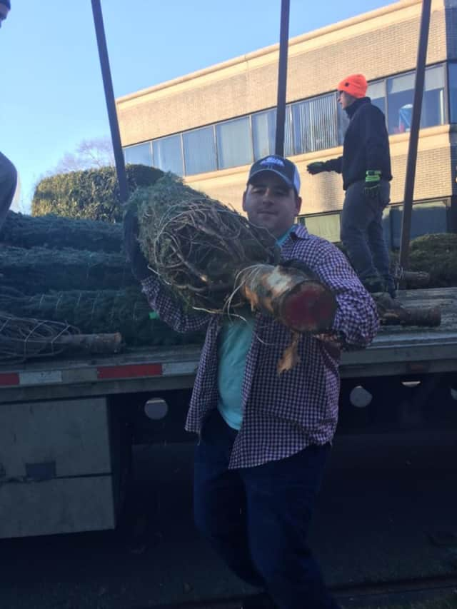 Christmas trees will be for sale by Trumbull Volunteer Fire Company, No. 1.