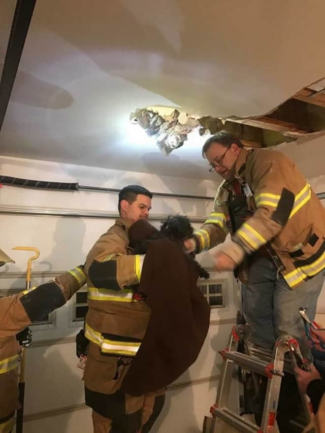 Firefighters from the Shelton Volunteer Fire Co. #4 Pine Rock Park break open the ceiling of a home after a dog became trapped in heating duct.