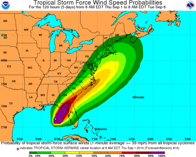 Tropical Storm Hermine could bring heavy rains and high winds to the area over the Labor Day weekend.