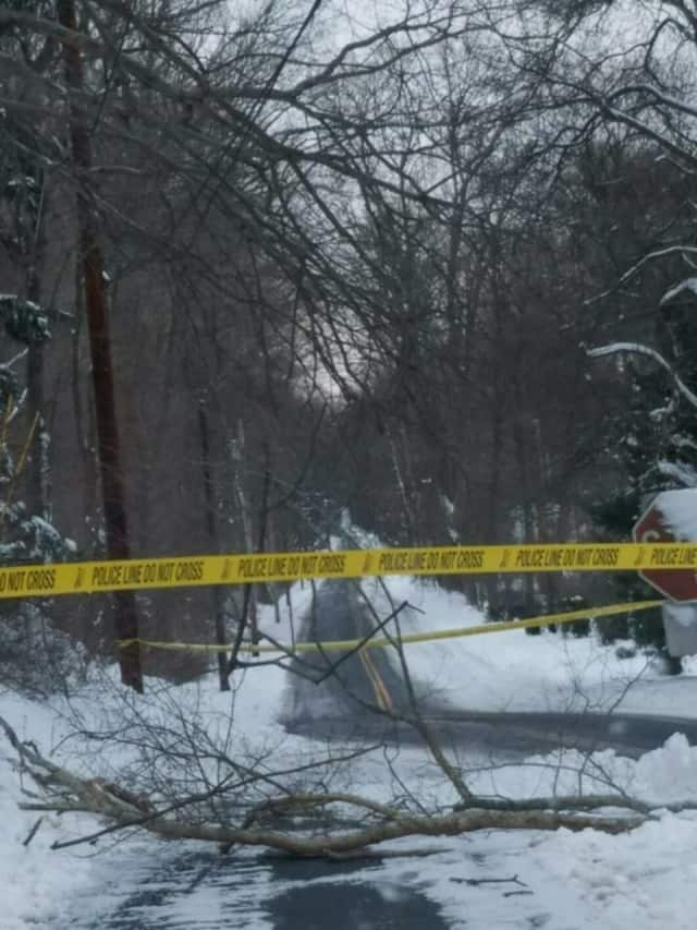 A tree and wires are down in the road on Mills Lane in Easton after the snowstorm, Easton Police said.