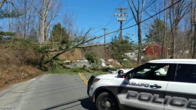 A tree is currently blocking Ladentown Road in the Pomona area.