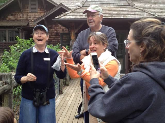 Connecticut Audubon Society in Fairfield is offering a free program on birds on Saturday morning as part of the Connecticut Open House Day.