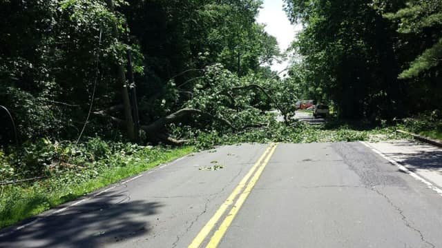 Route 340 will be closed for at least the next four hours due to a downed tree and wires.
