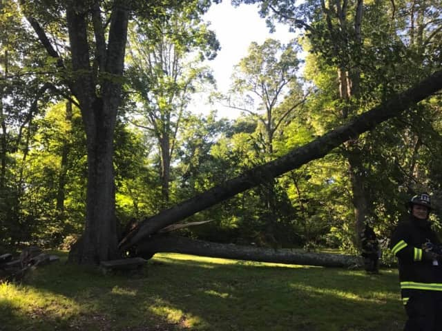 The strong storm that moved through the area Sunday into early Monday continues to affect roadways and commuters in Northern Westchester and Putnam as gusty winds continue to bring down trees and wires in the area.
