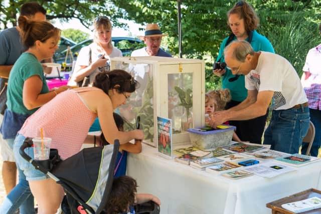 Stony Kill Farm is hosting its annual butterfly festival.