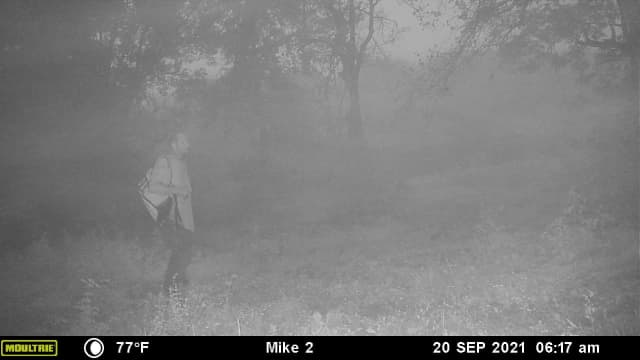 The image was captured on a deer camera in Northwestern Florida.
