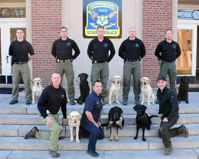 Eight K9 teams have graduated from the Connecticut State Police Canine Training Unit. Five will be assigned to patrol Metro-North trains and train stations.