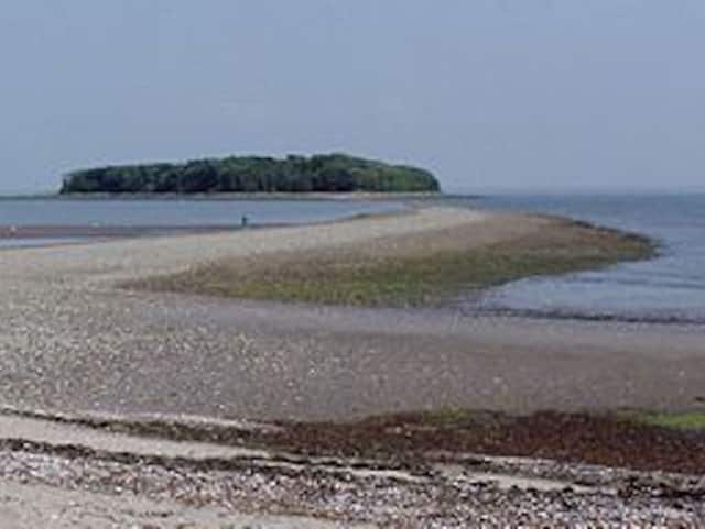 A body recovered Sunday evening on Charles Island off the coast of Silver Sands State Park in Milford may be that of a missing Bridgeport man, police said.