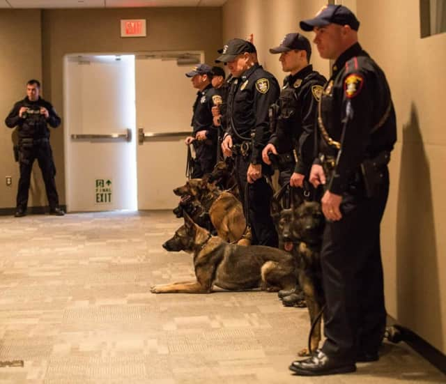 K-9 Officers show off their partners following a training class graduation.