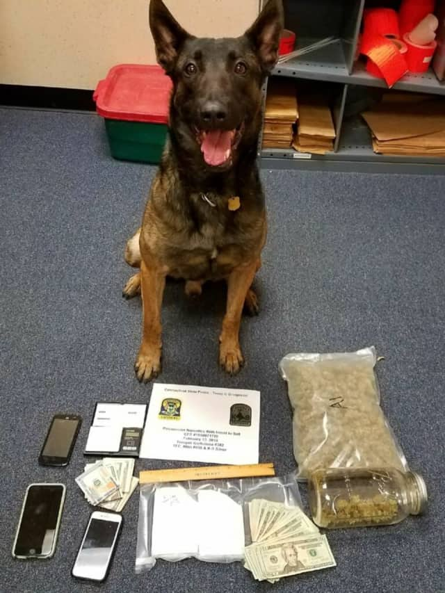 K9 Silver helped Connecticut State Police troopers recover cocaine, marijuana and nearly $2,500 in cash.