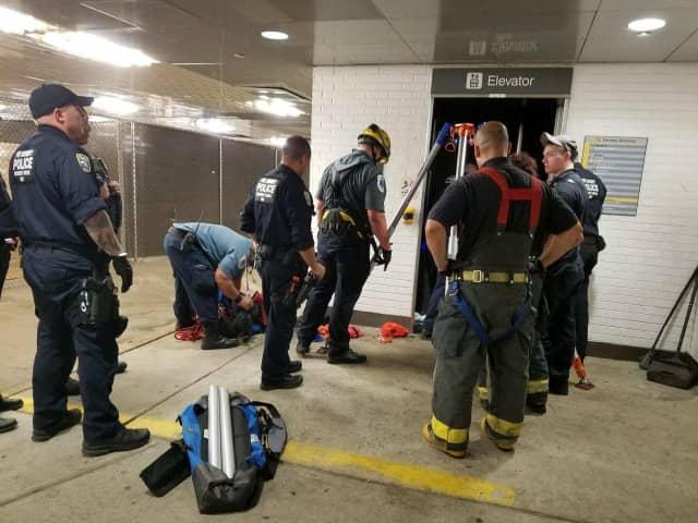 The PAPD Emergency Services Unit sets a hoist to rescue victim.