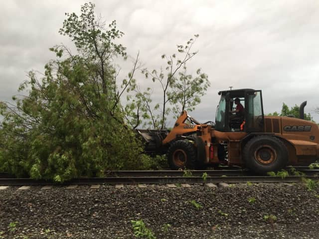 Metro-North crews worked overnight to remove more than 100 trees from tracks.