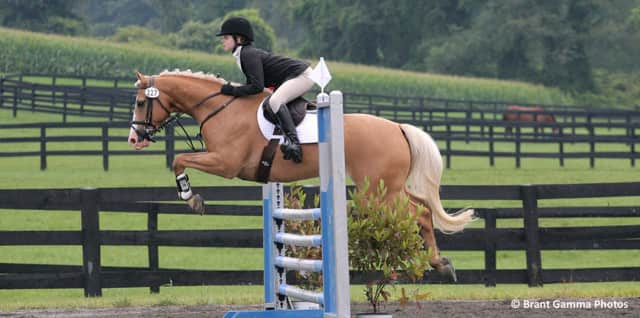 Millbrook is hosting the annual Millbrook Horse Trials this weekend.