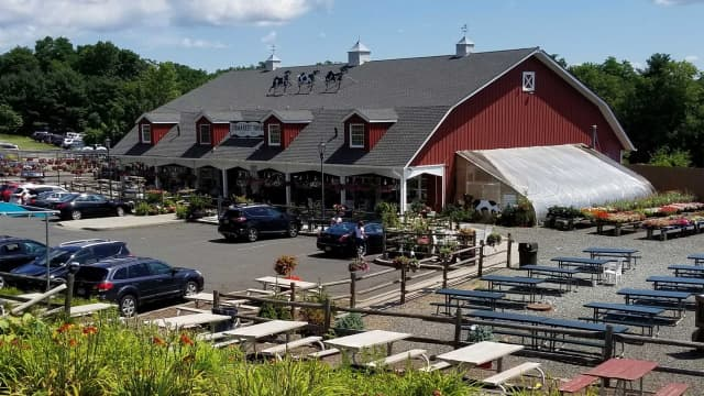 Demarest Farms is one of the most popular apple picking spots in Bergen County.