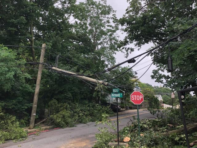 A tree took down power lines in Tuckahoe, leading to multiple road closures.