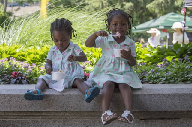 Young visitors enjoy the Lockwood-Mathews Mansion Ice Cream Social in 2015.
