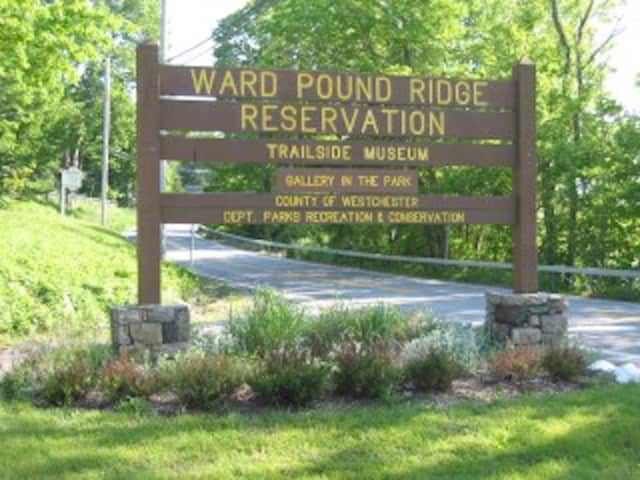 Ward Pound Ridge Reservation