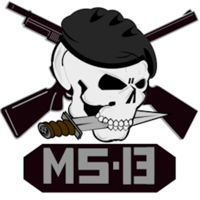 MS-13 gang members on Long Island are facing a host of charges.