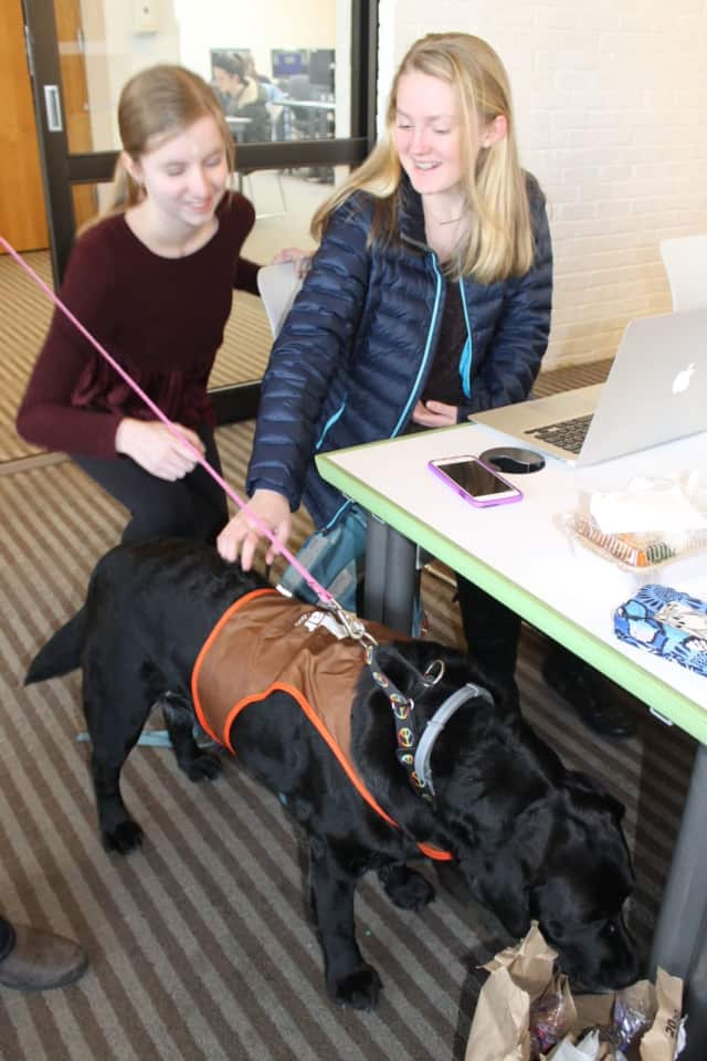 Abby Hinck and Emily Paradis took a break from mid-term studying last year at Wilton Library and spent some quality time with ROAR therapy dog Carly to de-stress during exam week.