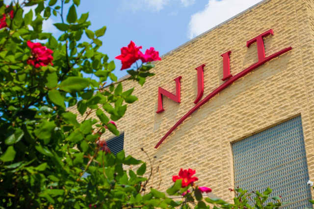 Two members of NJIT's campus police force were suspended following the arrest of a youth near the Newark campus Monday
