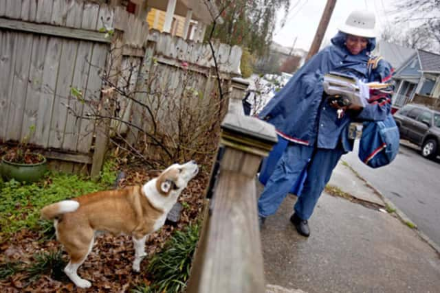 Overall, there were more than 500 fewer dog attacks on postal workers nationwide last year than in 2016, the U.S. Postal Service said.
