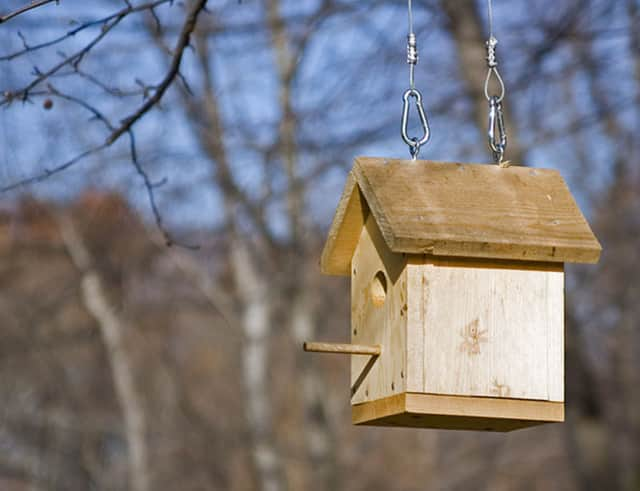 Build a birdhouse at the Demarest Train Station.