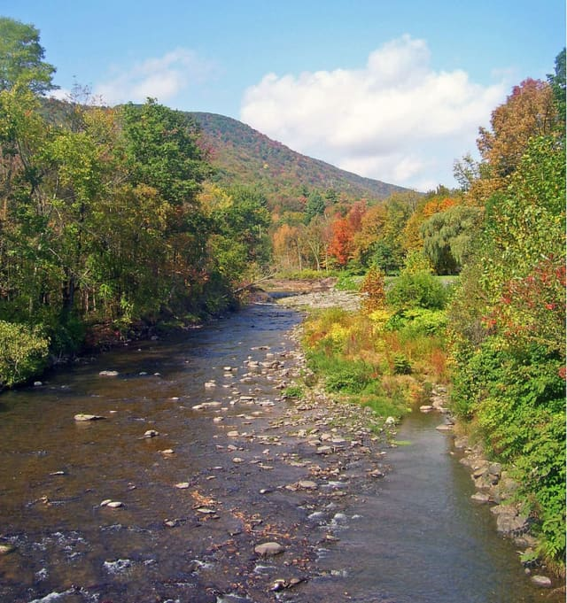 A man's body was found floating in the Esopus Creek.